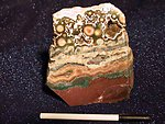 Sea Jasper Plaque 40 LB Lot
