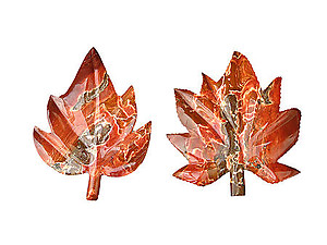 Chestnut Jasper Leaves