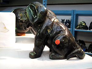 Labradorite Dog Sitting
