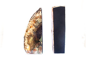 Petrified Wood Bookends (1-3Kg) - AAA