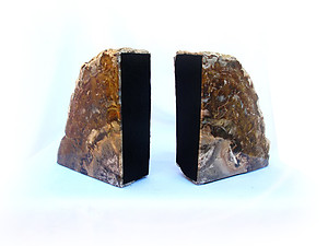 Petrified Wood Bookends (3-5Kg) - AAA