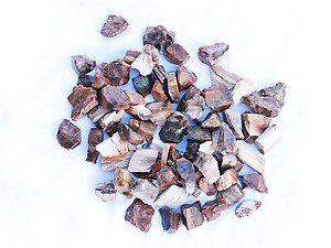 Petrified Wood Rough - Gem Decor Rough (5-30g) 5Kg Bag (11LBS and UP)